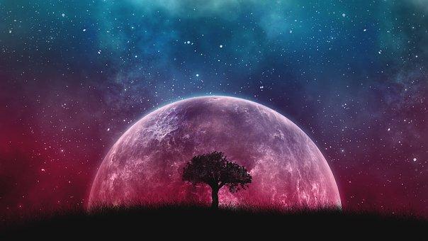 1本の木の後ろに壮大な宇宙