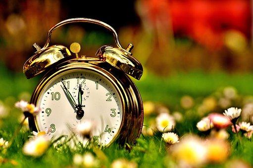 野原に置いてある時計
