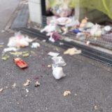 道路に散乱した生ゴミ