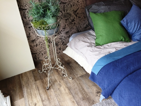 観葉植物の置いてある寝室