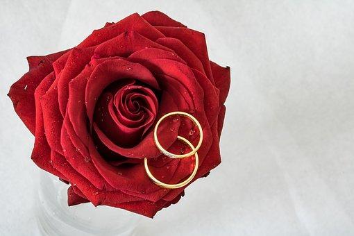 赤いバラと2つの指輪