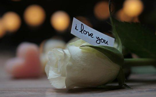 白い薔薇とアイラブユーと書かれた付箋