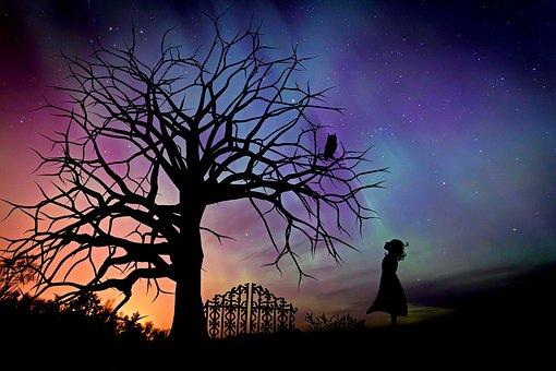 オーロラ,枯れた木,少女