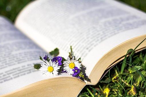 開かれた本と一輪の花