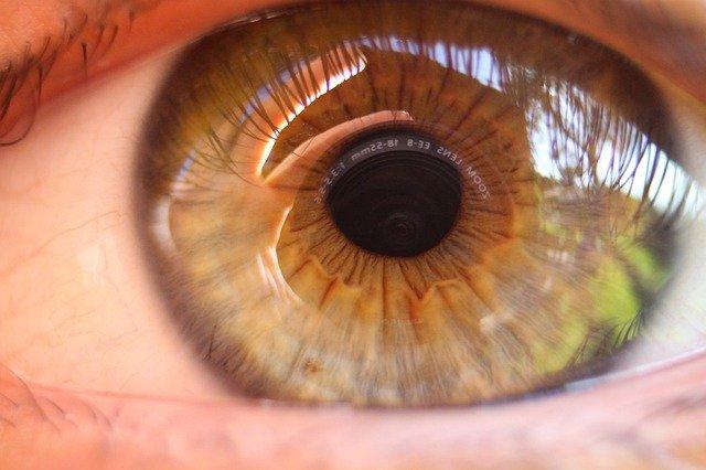 大きな茶色い瞳