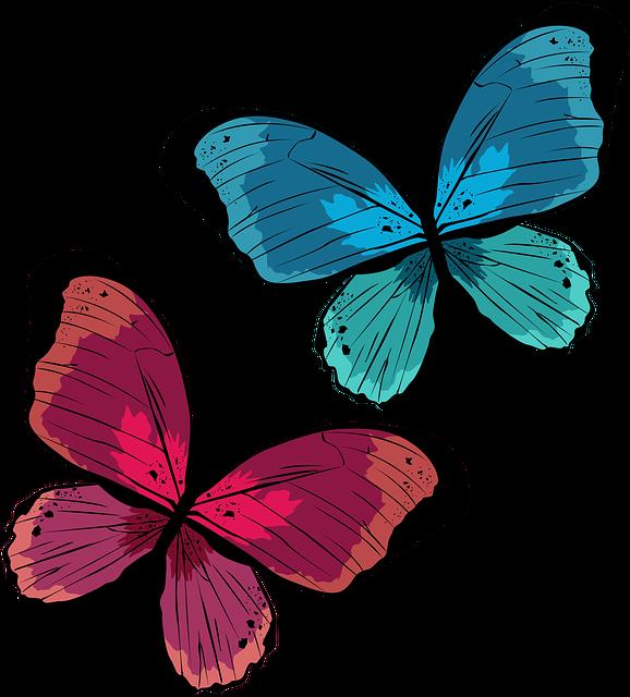 会いたい人 会える 待ち受け 画像 蝶